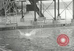 Image of 1932 Summer Olympic game highlights Los Angeles California USA, 1932, second 32 stock footage video 65675063358