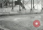 Image of 1932 Summer Olympic game highlights Los Angeles California USA, 1932, second 34 stock footage video 65675063358