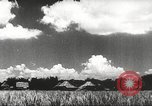 Image of This Is My Home Philippines, 1957, second 60 stock footage video 65675063391