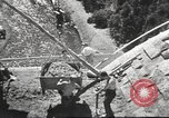 Image of Adolf Hitler Germany, 1936, second 29 stock footage video 65675063401