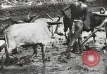 Image of Indian troops India, 1942, second 25 stock footage video 65675063439
