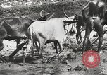 Image of Indian troops India, 1942, second 26 stock footage video 65675063439