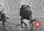 Image of Indian troops India, 1942, second 32 stock footage video 65675063439