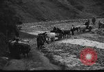 Image of Spanish Civil War soldiers Spain, 1936, second 25 stock footage video 65675063516