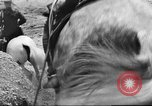 Image of British cavalry UK, 1936, second 30 stock footage video 65675063517