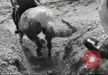 Image of British cavalry UK, 1936, second 46 stock footage video 65675063517