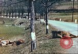 Image of wrecked German equipment Germany, 1945, second 16 stock footage video 65675063550