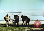 Image of United States airmen Germany, 1945, second 32 stock footage video 65675063558