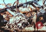 Image of United States soldier Germany, 1945, second 8 stock footage video 65675063565