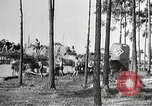 Image of German airmen Germany, 1939, second 29 stock footage video 65675063664