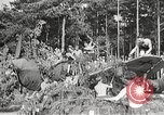 Image of German airmen Germany, 1939, second 43 stock footage video 65675063664