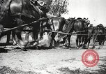 Image of German soldiers Poland, 1939, second 37 stock footage video 65675063667