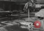 Image of instant dry cleaning Hungary, 1960, second 11 stock footage video 65675063688