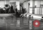 Image of instant dry cleaning Hungary, 1960, second 28 stock footage video 65675063688