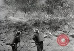 Image of forest fire California United States USA, 1934, second 29 stock footage video 65675063715