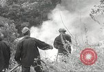 Image of forest fire California United States USA, 1934, second 32 stock footage video 65675063715