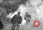 Image of forest fire California United States USA, 1934, second 33 stock footage video 65675063715