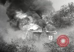 Image of forest fire California United States USA, 1934, second 39 stock footage video 65675063715