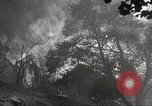 Image of forest fire California United States USA, 1934, second 44 stock footage video 65675063715