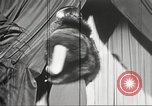 Image of Fur fashion show New York United States USA, 1934, second 48 stock footage video 65675063723