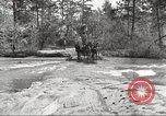 Image of small game hunting United States USA, 1920, second 17 stock footage video 65675063728