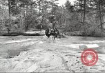 Image of small game hunting United States USA, 1920, second 21 stock footage video 65675063728
