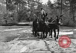 Image of small game hunting United States USA, 1920, second 33 stock footage video 65675063728