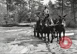 Image of small game hunting United States USA, 1920, second 34 stock footage video 65675063728