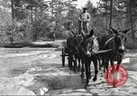 Image of small game hunting United States USA, 1920, second 35 stock footage video 65675063728