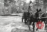 Image of small game hunting United States USA, 1920, second 36 stock footage video 65675063728