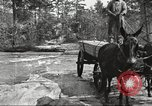 Image of small game hunting United States USA, 1920, second 38 stock footage video 65675063728