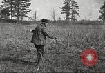 Image of small game hunting United States USA, 1920, second 39 stock footage video 65675063728