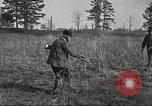 Image of small game hunting United States USA, 1920, second 40 stock footage video 65675063728