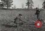 Image of small game hunting United States USA, 1920, second 41 stock footage video 65675063728