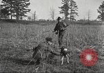 Image of small game hunting United States USA, 1920, second 42 stock footage video 65675063728