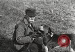 Image of small game hunting United States USA, 1920, second 43 stock footage video 65675063728