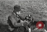 Image of small game hunting United States USA, 1920, second 44 stock footage video 65675063728