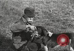 Image of small game hunting United States USA, 1920, second 45 stock footage video 65675063728