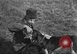 Image of small game hunting United States USA, 1920, second 46 stock footage video 65675063728