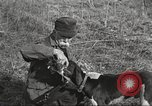 Image of small game hunting United States USA, 1920, second 47 stock footage video 65675063728