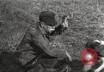 Image of small game hunting United States USA, 1920, second 50 stock footage video 65675063728