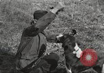 Image of small game hunting United States USA, 1920, second 52 stock footage video 65675063728