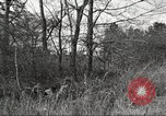 Image of small game hunting United States USA, 1920, second 59 stock footage video 65675063728