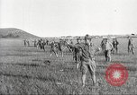 Image of United States Army training United States USA, 1914, second 29 stock footage video 65675063749