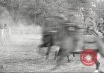 Image of US Army cavalry training Nebraska United States USA, 1914, second 62 stock footage video 65675063750