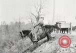 Image of United States Army Cavalry exercises United States USA, 1914, second 24 stock footage video 65675063753