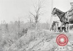 Image of United States Army Cavalry exercises United States USA, 1914, second 26 stock footage video 65675063753