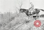 Image of United States Army Cavalry exercises United States USA, 1914, second 28 stock footage video 65675063753