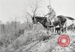 Image of United States Army Cavalry exercises United States USA, 1914, second 29 stock footage video 65675063753