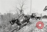 Image of United States Army Cavalry exercises United States USA, 1914, second 31 stock footage video 65675063753